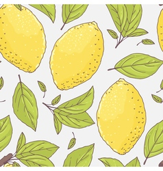 Seamless pattern with hand drawn lemon and leaves vector image vector image