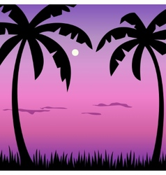 Tropical palms and moon landscape vector image vector image