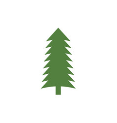 cedar tree graphic design template isolated vector image