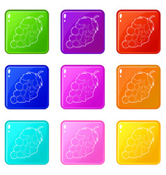 Grape icons set 9 color collection vector