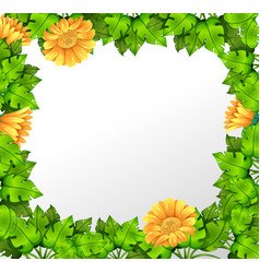 nature yellow flower border vector image