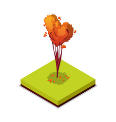 Trimmed tree isometric 3d icon vector
