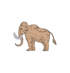 Woolly mammoth side drawing vector