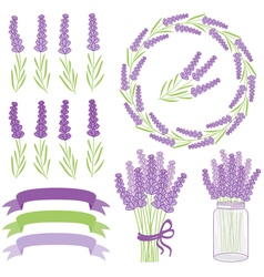 Lavender Set vector image vector image