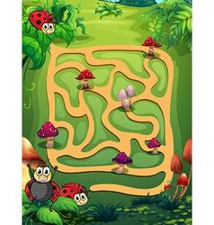 A maze vector