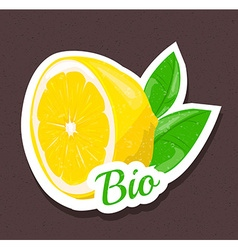 Bio lemon tag vector image