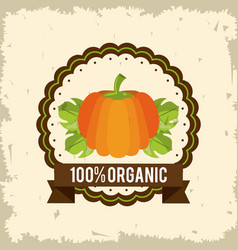 colorful logo of organic food with pumpkin vector image