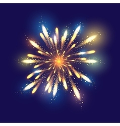 Fireworks dark background with vector image