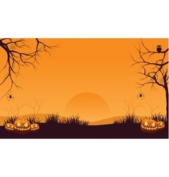 Halloween orange pumpkins vector image