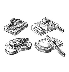 hand drawn set butter sketch on white vector image