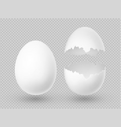 realistic white eggs with whole and broken vector image