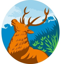 Roaring red stag deer with forest vector image