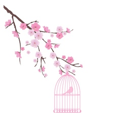 cherry bird vector image vector image