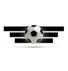 realistic soccer ball or football ball on white vector image