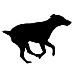 Doberman pinscher dog silhouette on a white vector