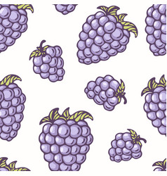 Hand drawn seamless pattern with blackberry vector