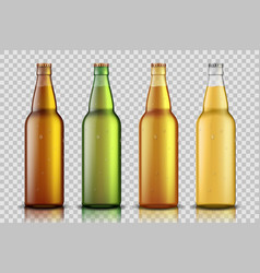 set of realistic glass beer bottle with liquid vector image