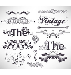 Vintage Calligraphic Set vector image