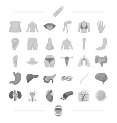 body physiology medicine and other web icon in vector image