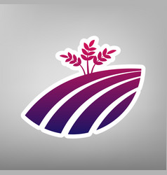 wheat field sign purple gradient icon on vector image