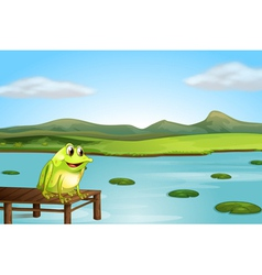 A frog above the wooden bridge vector image vector image