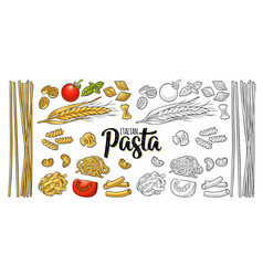 different types macaroni and italian pasta vector image