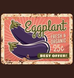 Eggplant metal plate rusty vegetable poster retro vector