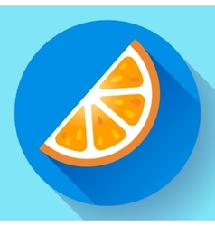 Fruit orange icon flat style vector