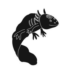 Lizard and axolotl sign vector