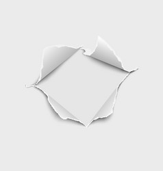 Snatched middle paper with torn edges vector