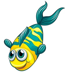An aquatic fish vector image