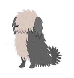 Bobtail dog raster in flat cartoon vector