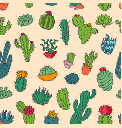 Cactus home nature handmade of vector