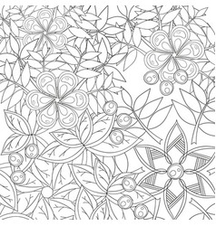 coloring book page for adults and kids in doodle vector image