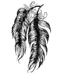 Grunge feathers design vector
