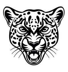 head mascot leopard isolated on white vector image