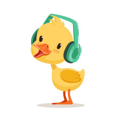 Little yellow duck chick listening to music on vector