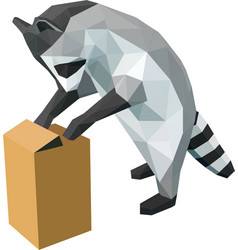 Raccoon with a box vector