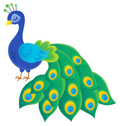Stylized peacock topic image 2 vector