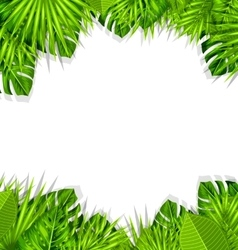 Summer fresh background with tropical leaves vector