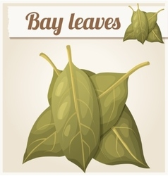 Bay leaves Detailed Icon vector image vector image