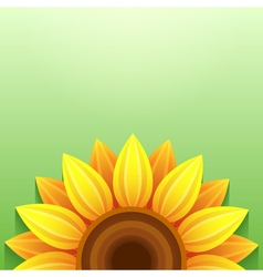 Stylish green background with 3d sunflower vector