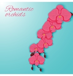 A branch of pink orchids on a bright background vector image
