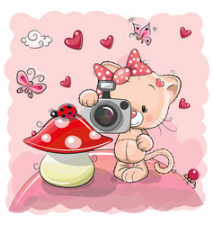 cute cartoon kitten with a camera vector image vector image