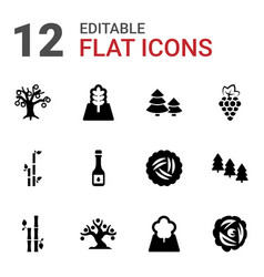 12 branch icons vector