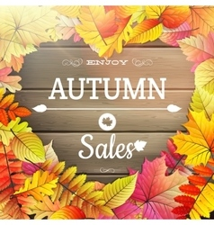 Autumn sale typography poster EPS 10 vector