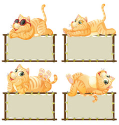 Board template with cute kitten on white vector