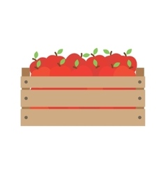 box with fresh red apples vector image
