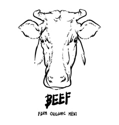 Hand drawn Cows head outline Beef organic meat vector