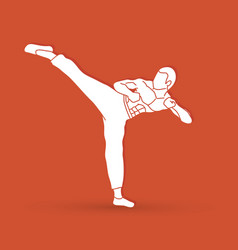 Kung fu karate kick graphic vector